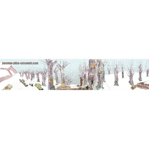 www.passion-pilze-sammeln.com benötigt ein illustration