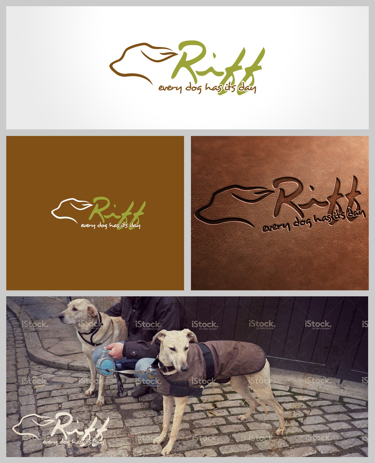 """""""every dog has its day"""" create a brand identity for custom made dog coat"""