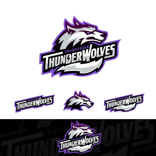 Sports Logo for ThornCreek Christian School