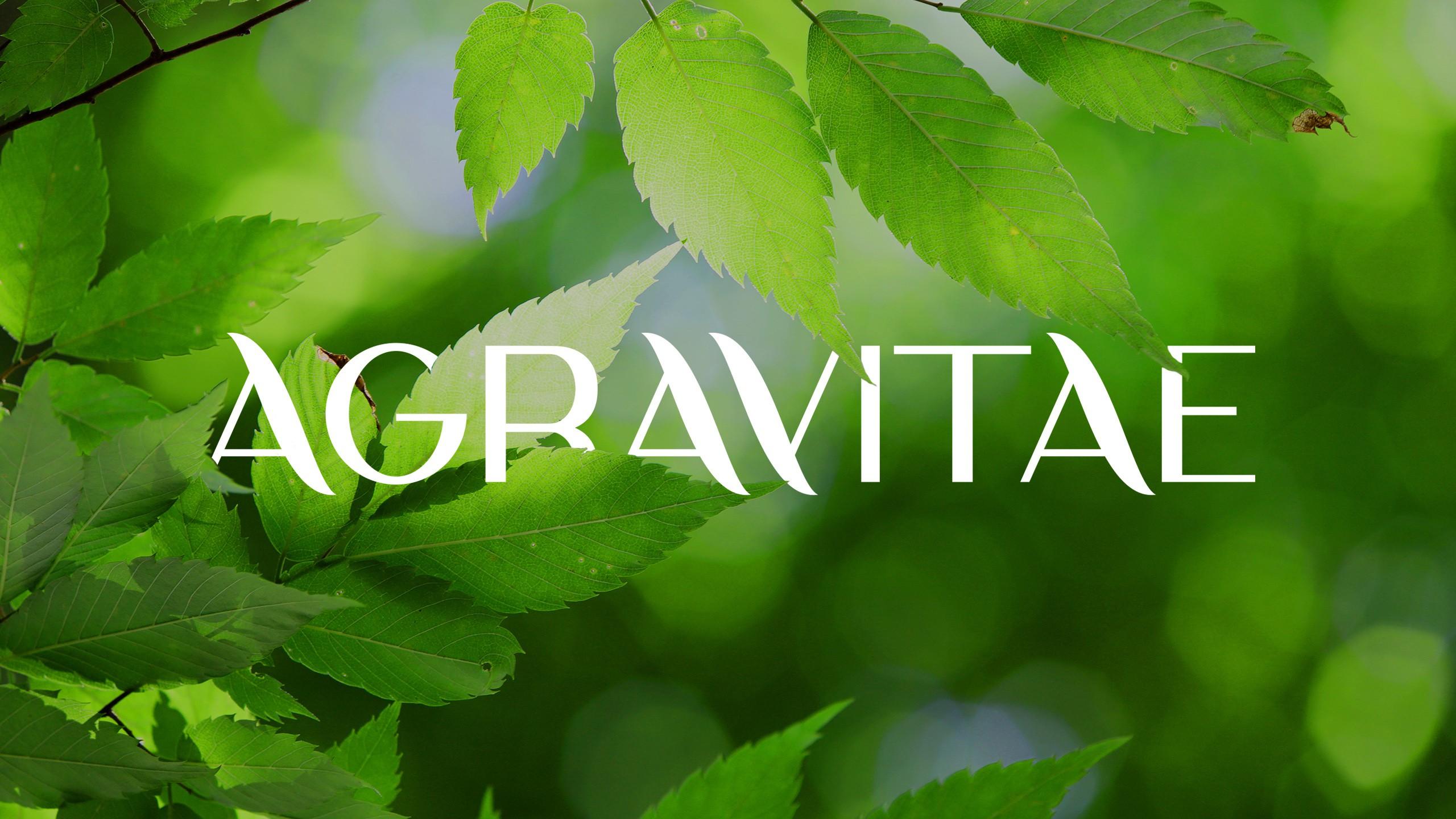 Agravitae Social Media Pages design