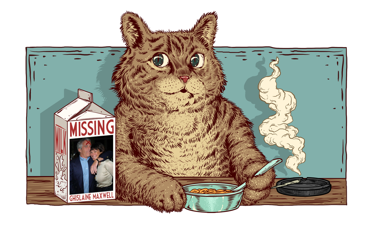 Cat eating bowl of cereal at table