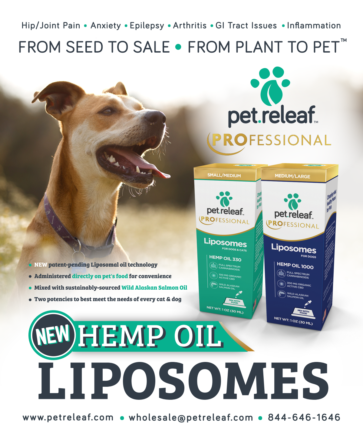 August Supplement Ad — PPN