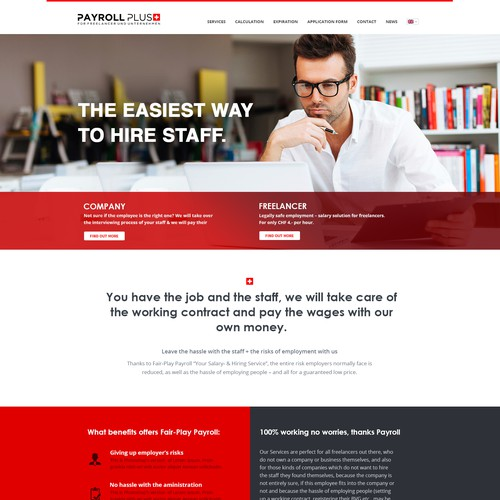 Payroll Plus homepage concept