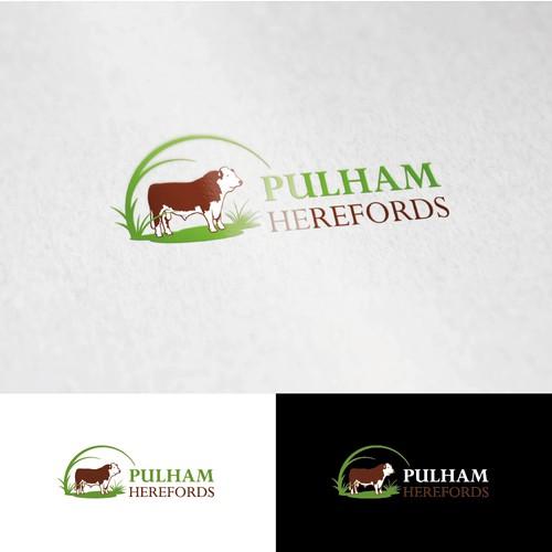Создайте профессиональный логотип для нашего наградами стада крупного рогатого скота