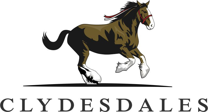 Clydesdales- Strong, Beautiful and Confidant Team Name