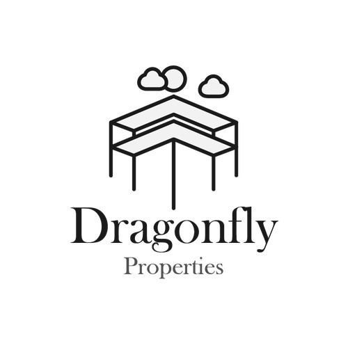Dragonfly properties