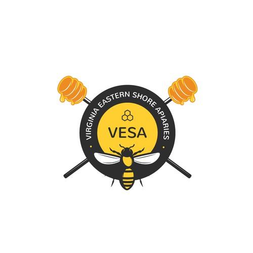 VESA Logo Design