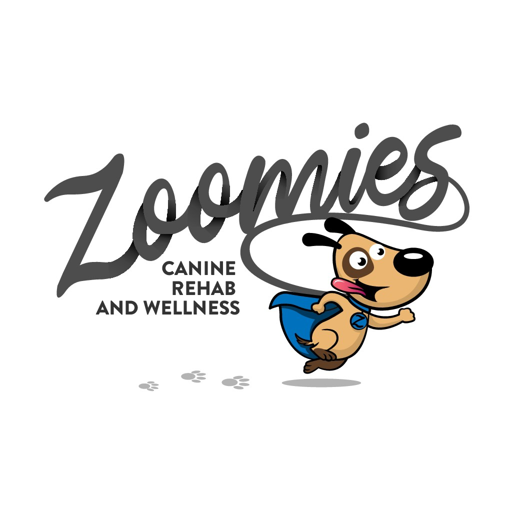 Logo Design for a new Canine Physical Therapy Business ZOOMIES!