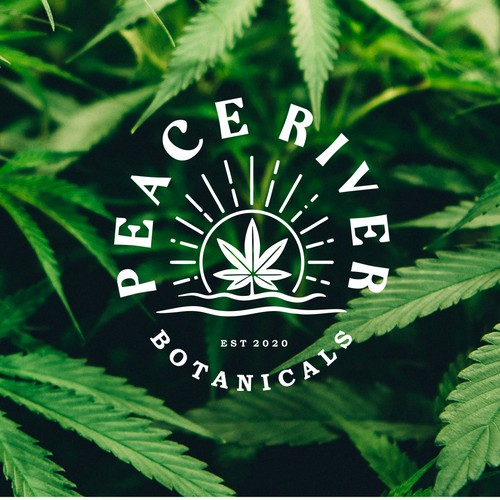 Logo concept for agricultural hemp products