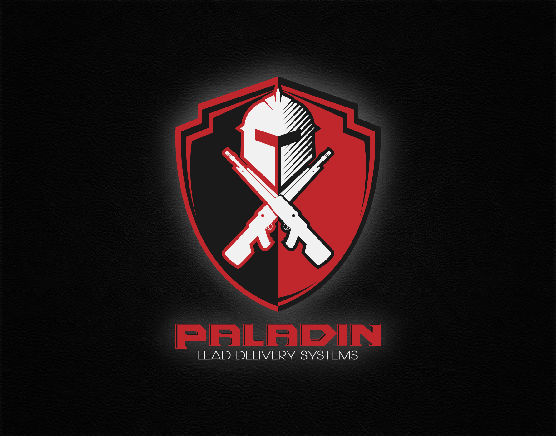 Help Paladin Lead Delivery Systems with a new logo