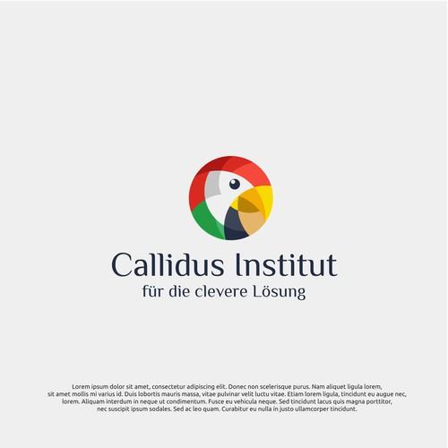 logo concept for callidus