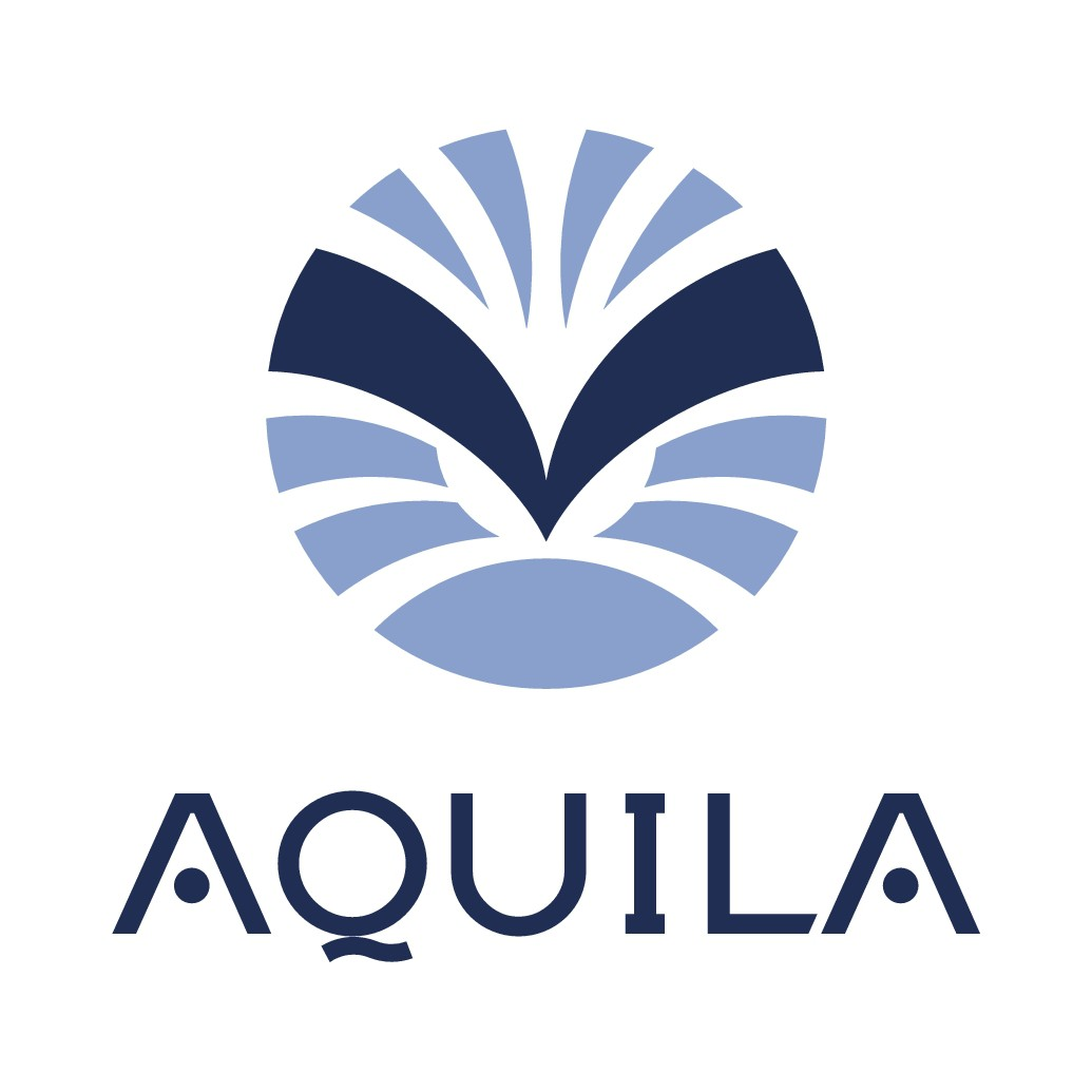 Design a logo for AQUILA application for Pernod Ricard