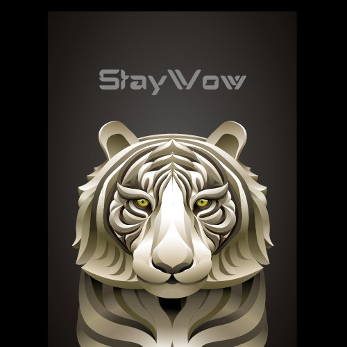 Stay Wow illustration