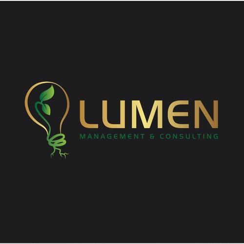 Logo & BC for LUMEN Mangement & Consulting
