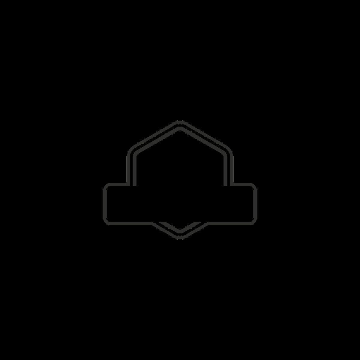 Add-on logo for Mountain Buffalo Company