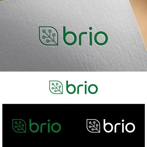 Brio Logo Design Concept