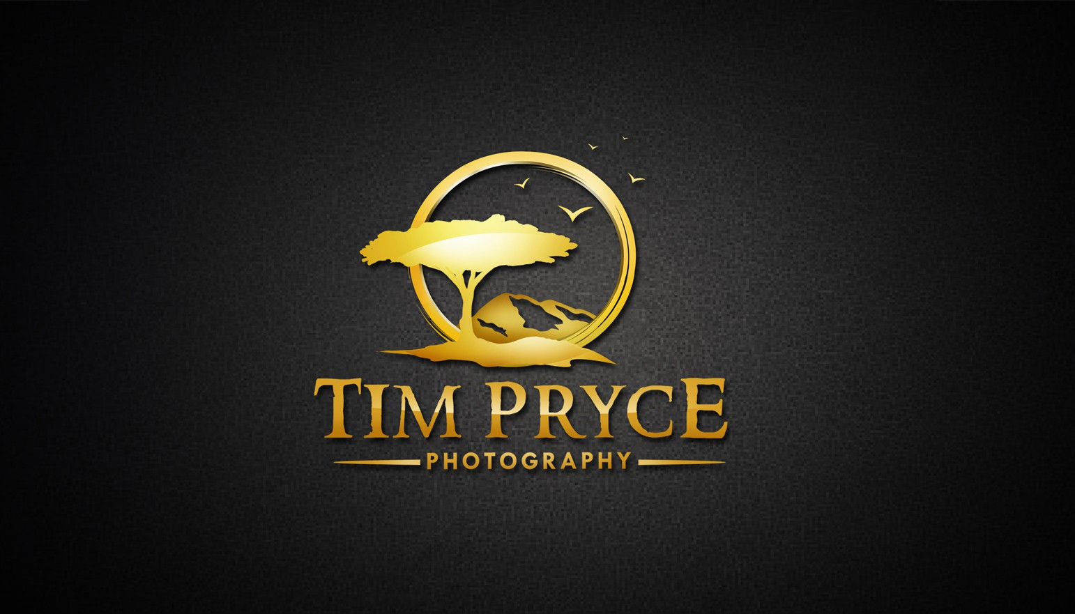 Create the next logo for Tim Pryce Photography