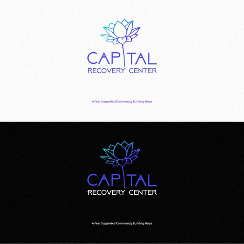 Another concept for a recovery center
