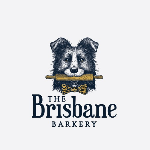 Friendly Border collie holding a rolling pin for The Brisbane Barkery