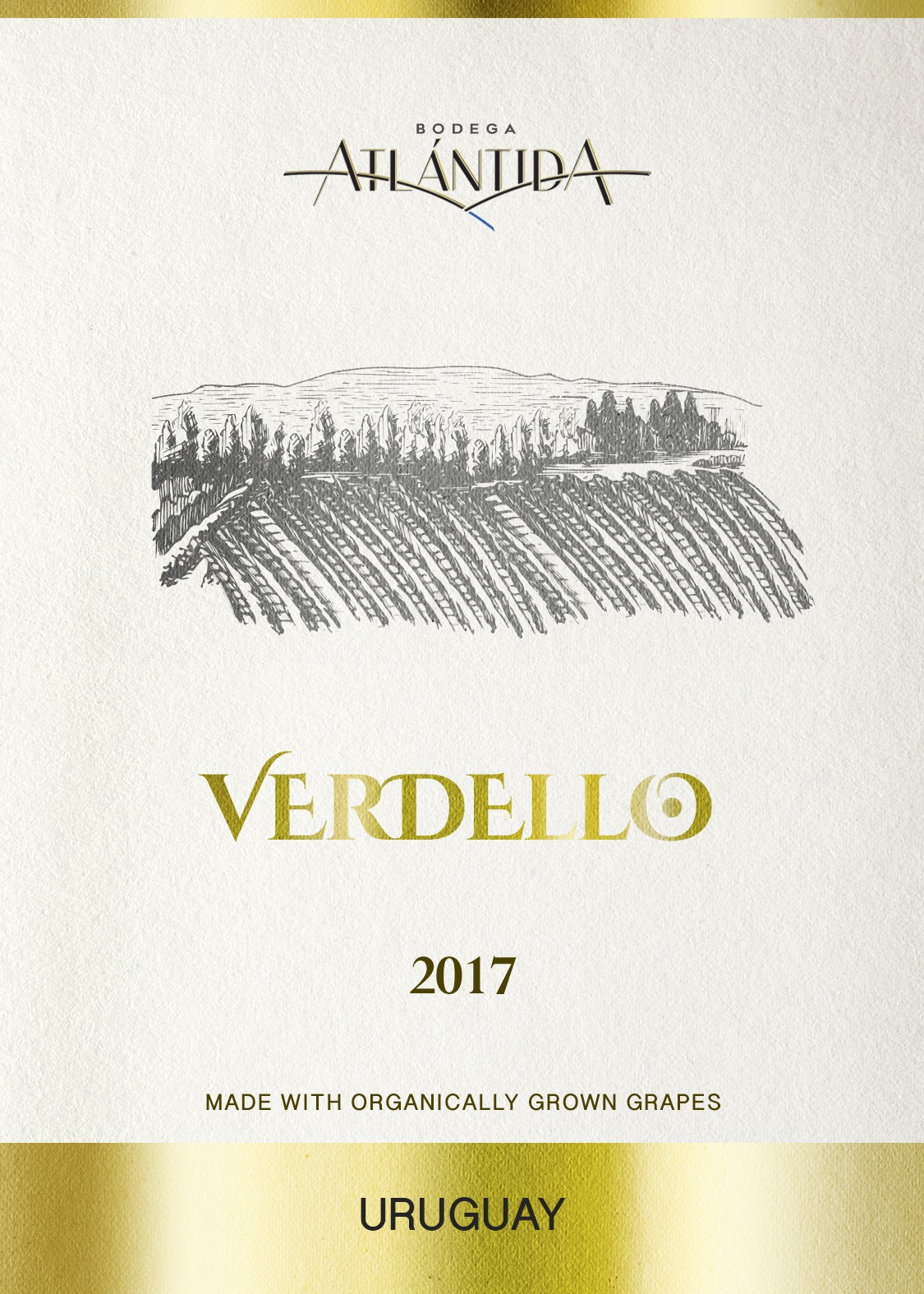 Wine Label with vineyard illustration