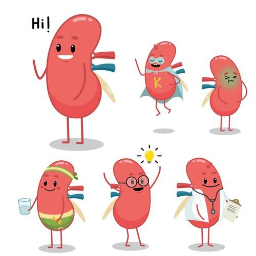 kidney character
