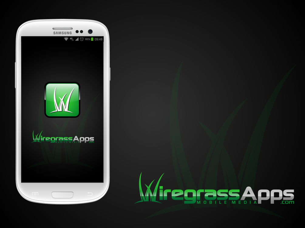 Create the next logo for Wiregrass Apps