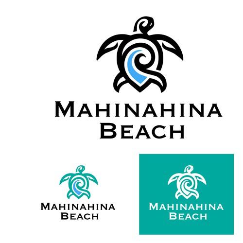 Mahinahina Beach Condo