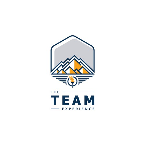 Logo concept for The Team Experience