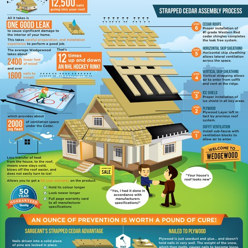 Cedar roof for house property infographic