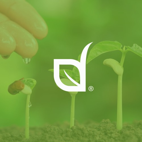 Seeds Company | AGL Seeds.