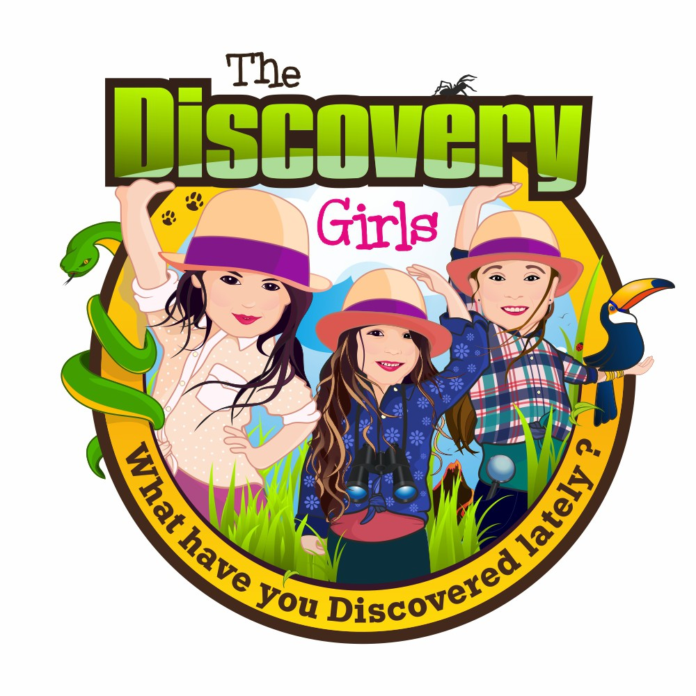 Create an AMAZING logo and website design for The Discovery Girls