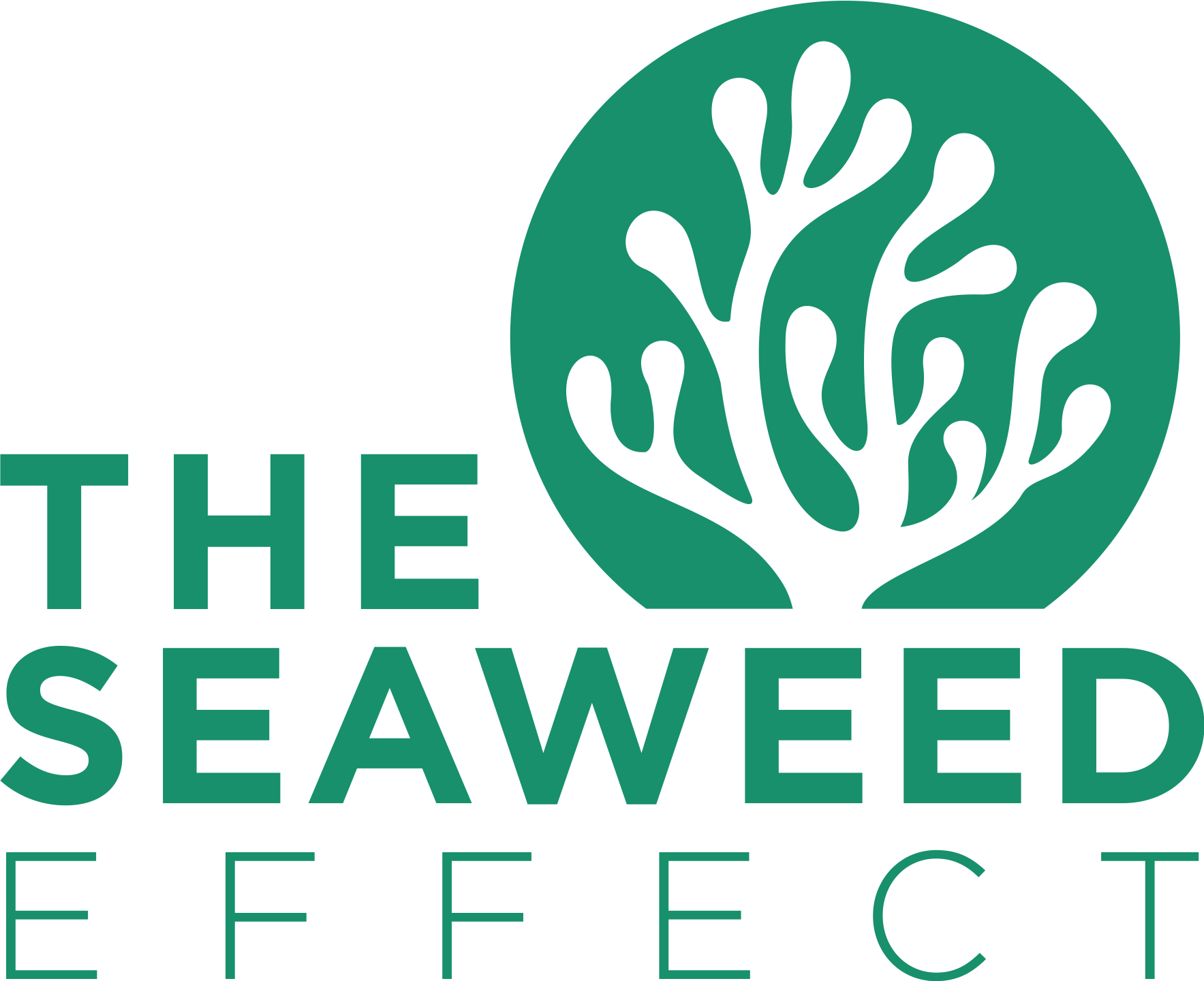 """Help us design a logo for """"The Seaweed Effect""""'s fight against plastic pollution!"""