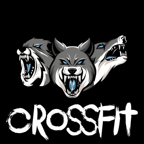 Logo CrossFit Gym Baru