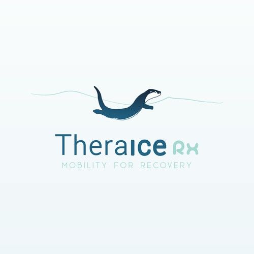 Concept for Theraice RX