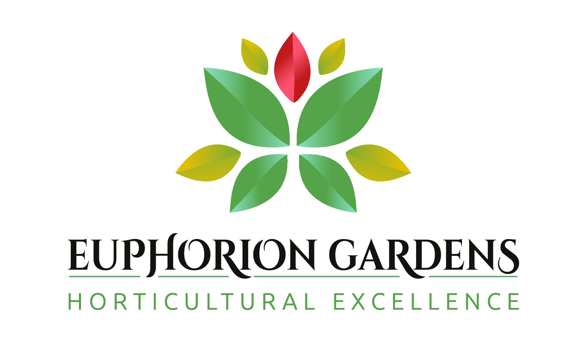 Modern, abstract representation of a butterfly for a gardening business logo