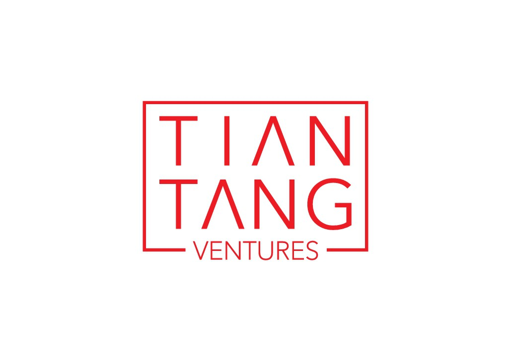 Venture capital firm from Asia/Europe needs a powerful clean logo