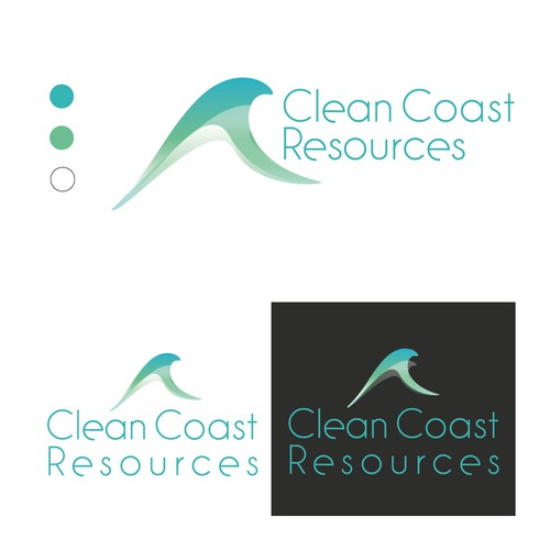 Clean and Simple logo for environmental company