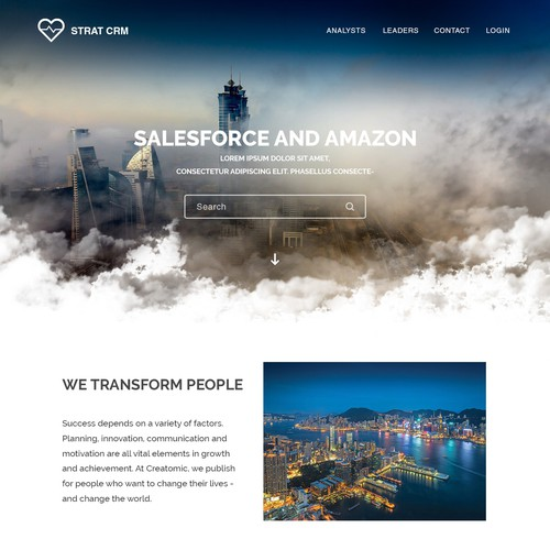 Analysts Website