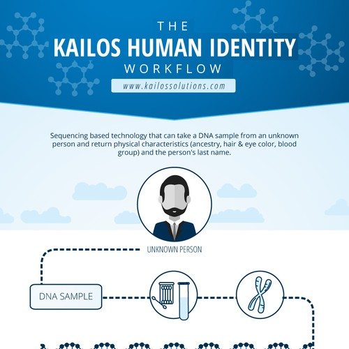Infographics for Kailos Human Identity Workflow