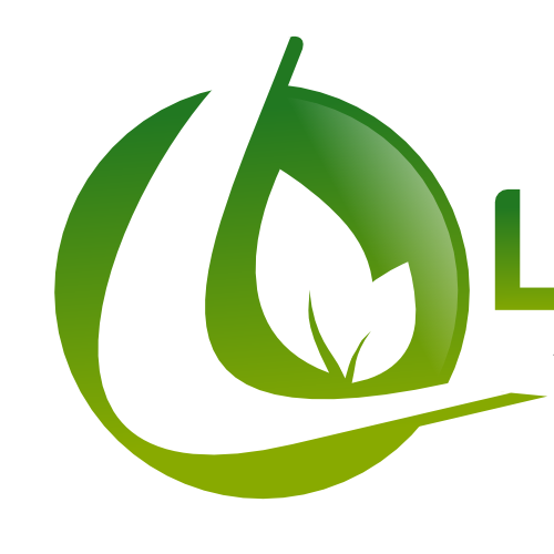 Create the next logo for LifeSpring Adventist Church