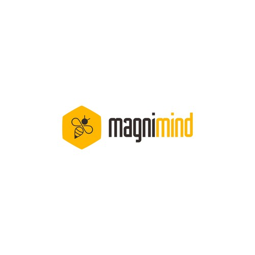Create an awesome logo for Magnimind developers school!