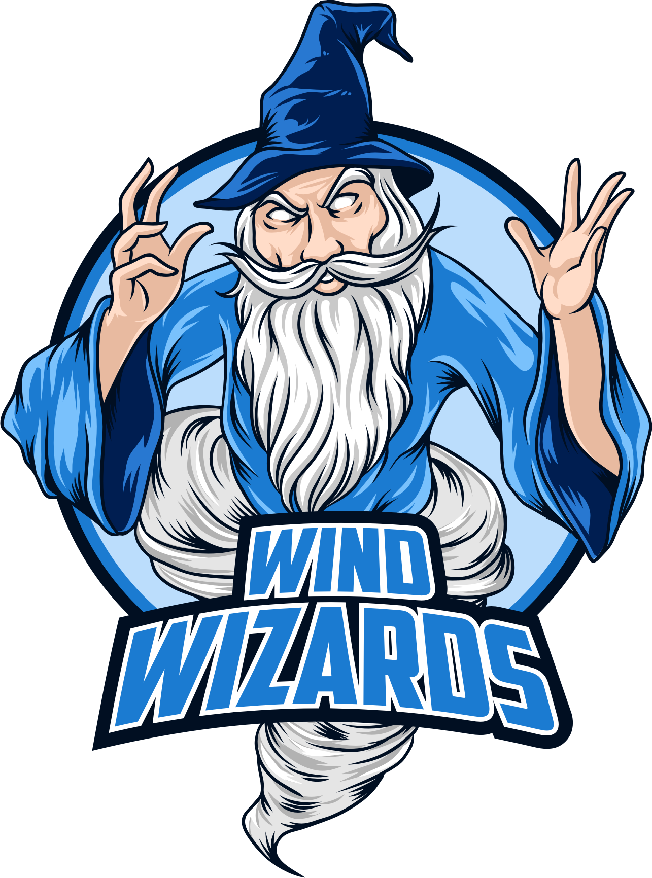Wind Wizards - high school business team needs your great ideas!