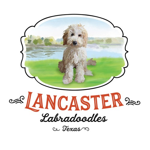 Logo for Labradoodle Breeder