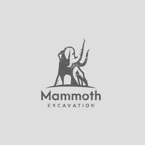 Logo for residential demolition and excavation company