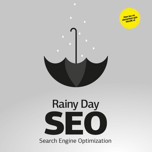 BIG RELEASE BOOK:  Rainy Day SEO  (Cover Needed)