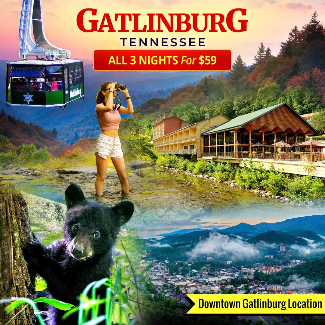 Create a 1:1 Facebook Banner - Gatlinburg