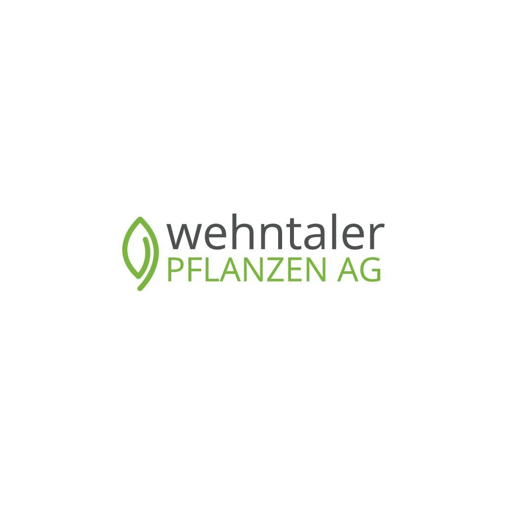 Logo design for potted herb producer