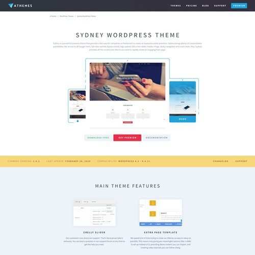 Landing Page for Popular WordPress Theme