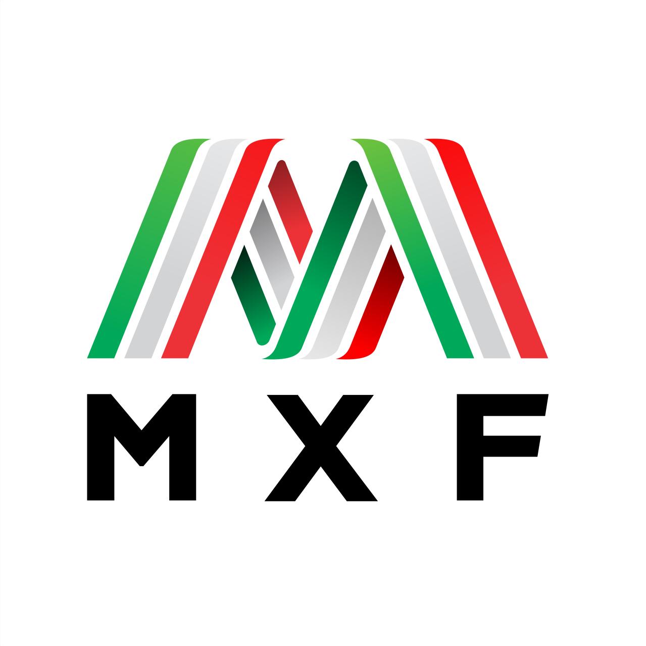 México Fuerte - Logo design for non-profit rebuilding México sustainably!