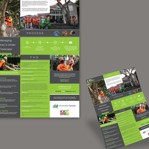 Create a professional brochure for Sydney's best tree service company!